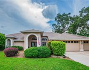 9407 Fox Hollow Lane, Weeki Wachee image
