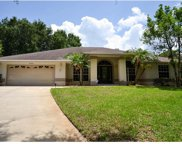 10512 Crystal Ridge Court, Clermont image