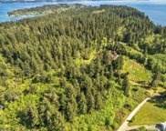 12918 134th Ave, Anderson Island image