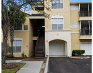 5125 Palm Springs Boulevard Unit 11207, Tampa image
