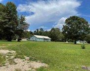 20430 Gum Swamp Rd, Livingston image