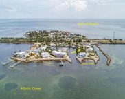 62900 Overseas Highway Unit 9, Conch image