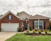 946  Platinum Drive, Fort Mill image