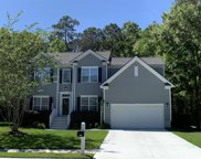 2210 Red Fern Lane, Mount Pleasant image