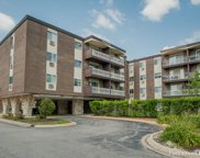 1311 South Finley Road Unit 417, Lombard image