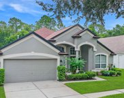 5905 Tealwater Place, Lithia image