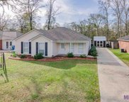 13011 She Lee Place Rd, Gonzales image