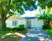 3042 Cypress Green Drive, Palm Harbor image