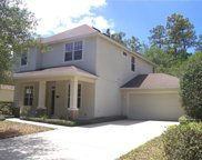 218 Brookgreen Way, Deland image