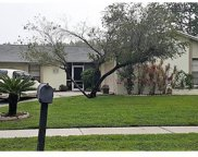 16507 Foothill Drive, Tampa image