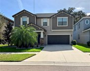 14274 Blue Dasher Drive, Riverview image