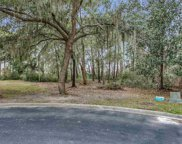Lot 511 Congressional Dr., Pawleys Island image