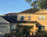 12902 Greenville Court, Tampa image