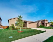 14136 Rabbit Brush, Haslet image