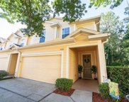 3638 Pine Knot Drive, Valrico image