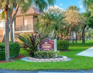 350 Lakeview Dr Unit #201, Weston image