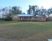 142 Co Rd 448, Clanton image