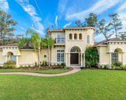 136 STRONG BRANCH DR, Ponte Vedra Beach image