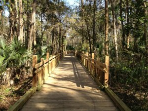 Celebration Walking Trails