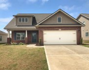 339 Huntwood Dr, Roebuck image