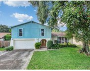 6911 Shady Place, Tampa image