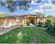 2916 Winding Trail Drive, Valrico image