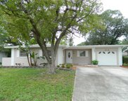 4718 W Alline Avenue, Tampa image