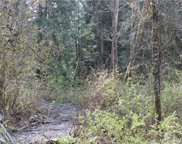 17718 Dubuque Rd, Snohomish image