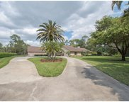 6781 Bottlebrush Ln, Naples image