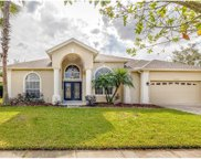12230 Shadowbrook Lane, Orlando image