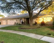 3436 Brian Road S, Palm Harbor image