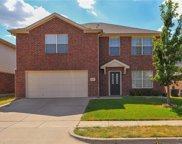 10409 Bear Hollow Drive, Fort Worth image