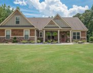 151 Coral Ridge Ct, Palmetto image