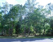 Lot 73 Lantana Circle, Georgetown image