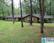 218 Pine Hill Dr, Columbiana image