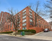 1115 South Plymouth Court Unit 116, Chicago image