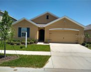 10033 Geese Trail Circle, Sun City Center image