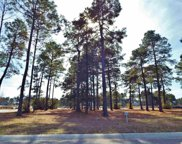 1039 Fiddleway Way, Myrtle Beach image