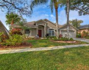 4616 Oak River Circle, Valrico image