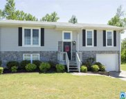 6983 Pannell Rd, Trussville image