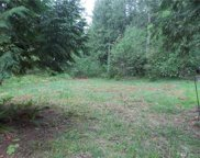 22236 Bluewater Dr SE, Yelm image