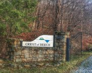 TBD Spruce Hollow Road, Beech Mountain image