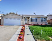 5044 Royal Palm Dr, Fremont image