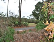 371 Royal Tern Way, Carrabelle image