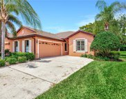 193 Shell Falls Drive, Apollo Beach image