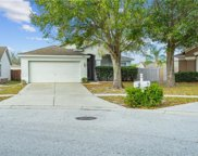 12414 Tree Pointe Court, Riverview image