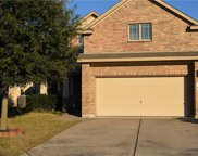 530 Travertine Trl, Buda image