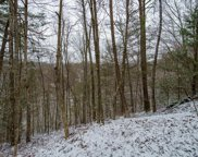 Lot 351A Rose Court, Sevierville image