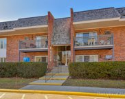 4133 Saratoga Avenue Unit 217, Downers Grove image