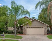 8783 NATURE VIEW LN W, Jacksonville image